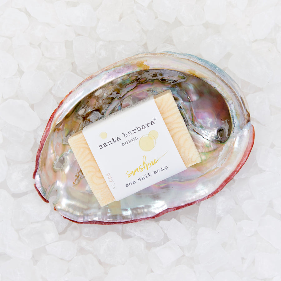 abalone shell gift set - sunshine