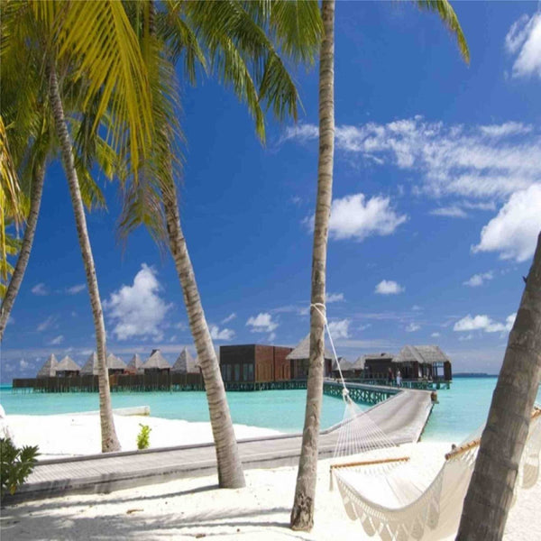 Maldives 🇲🇻 Honeymoon Package - A 7 Night Special Baecation