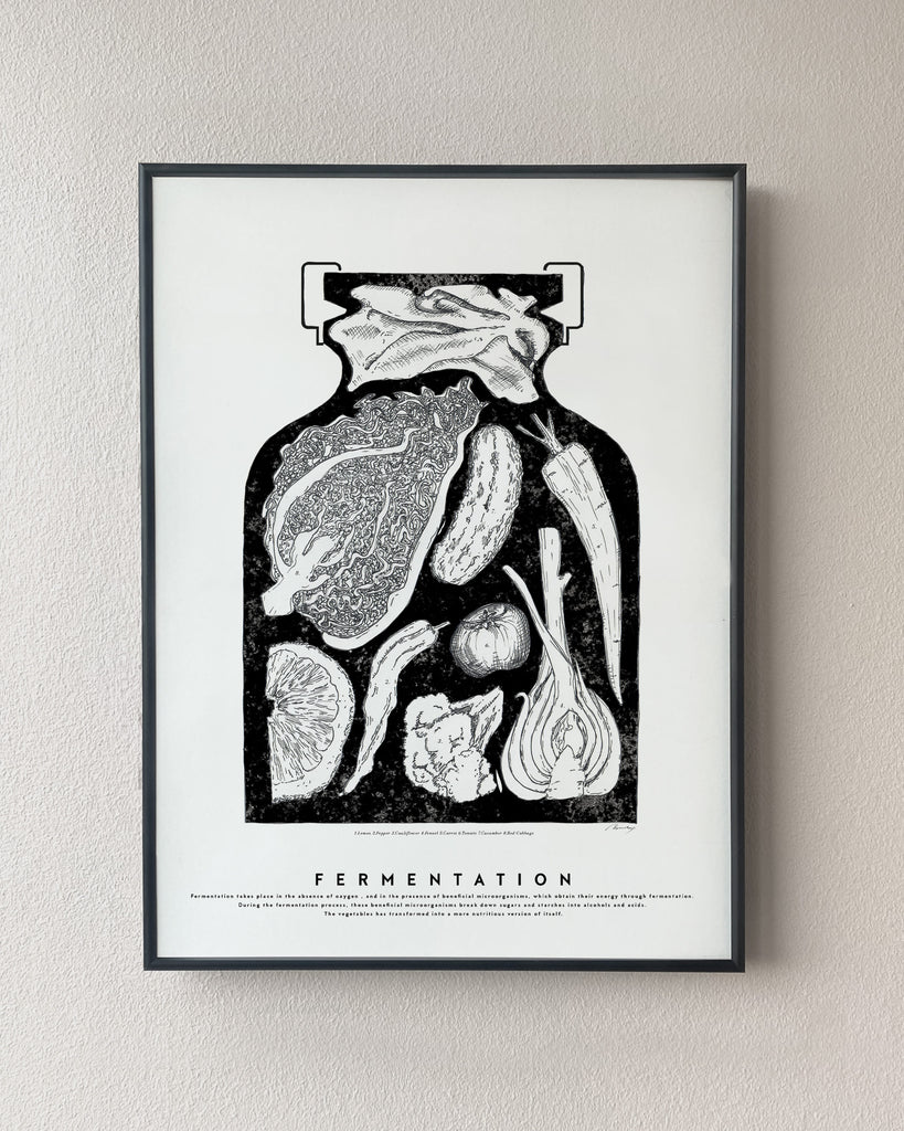 fermentation illustration poster kitchen