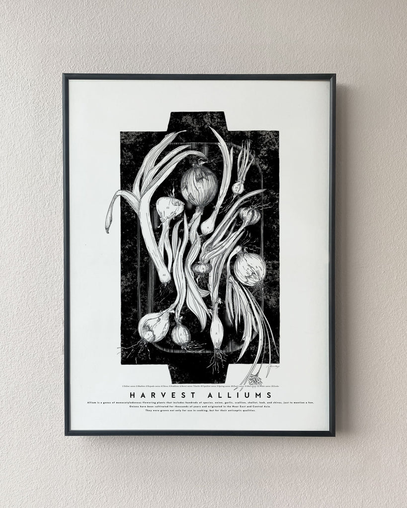 black and white onions poster kitchen