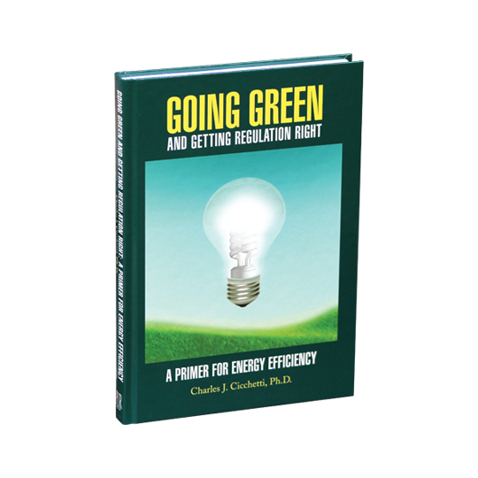 Going Green and Getting Regulation Right: A Primer on Energy Efficiency