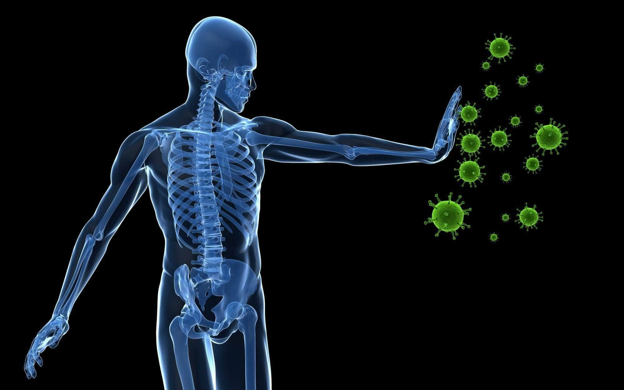 How CBD can help improve the immune system