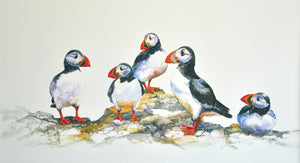 Puffin Party - Large Mounted Print