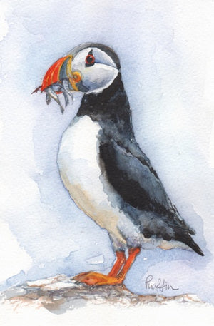 Single Puffin - Mounted Print