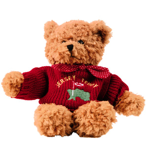Soft Jersey Teddy (red)