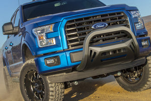 OCTA Series Bull Bar (04-18 F-150 excluding Raptor) - Black Powdercoated Stainless Steel