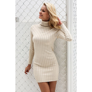 Classy Turtleneck Sweater Dress Outfit