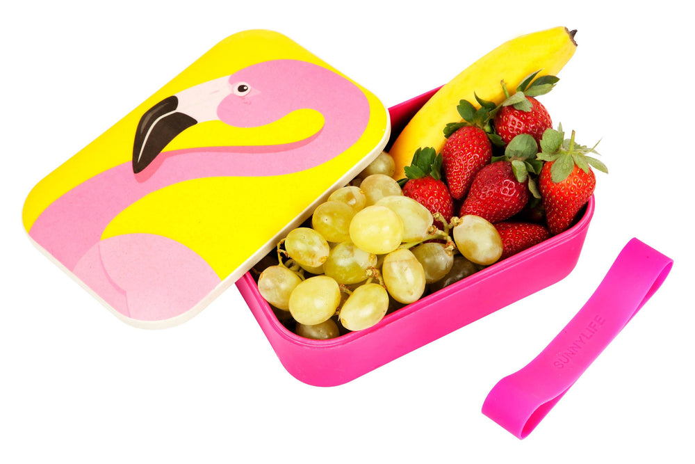 Load image into Gallery viewer, Flamingo Eco Lunch Box - Revelry Goods