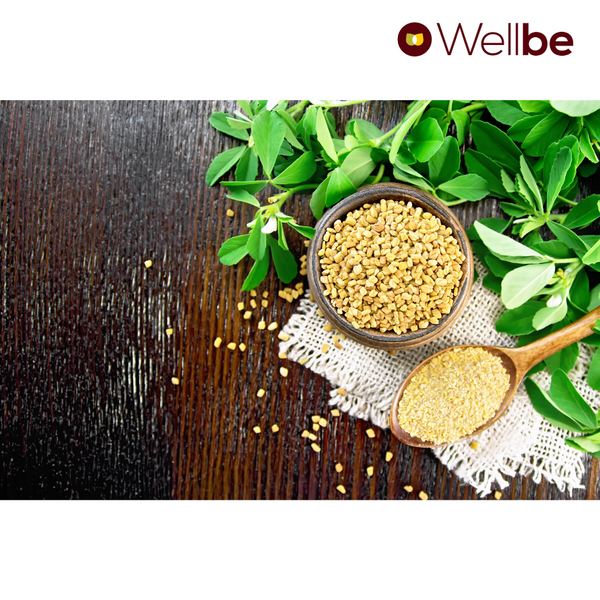 WELLBE FENUGREEK POWDER
