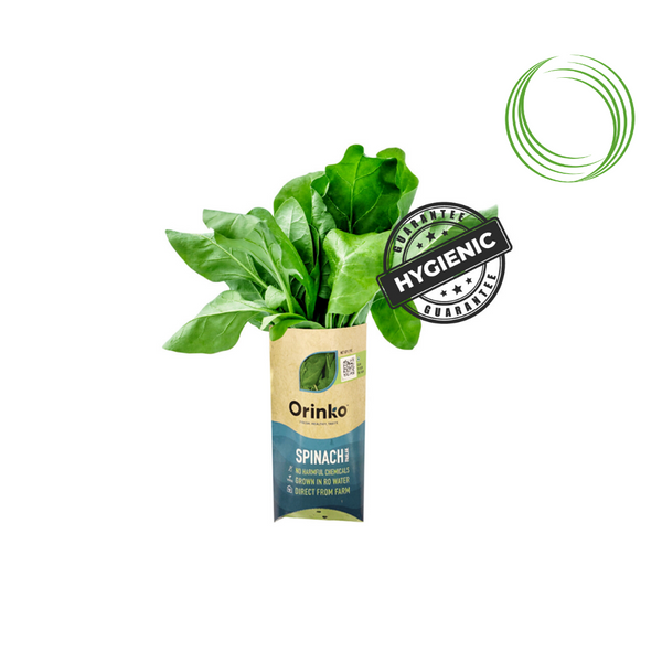 HYDROPONIC SPINACH (PALAK) BUNCH 200GM