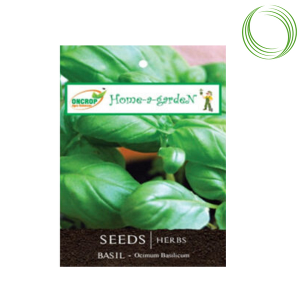 BASIL FLOWER SEEDS