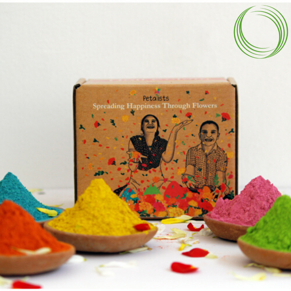 CRAFTIZEN DESIGN HOLI COLOR 300 GMS