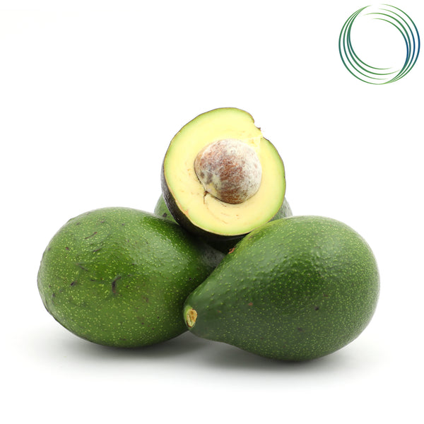 ORGANIC BUTTER FRUIT / ORGANIC AVOCADO  500 GMS