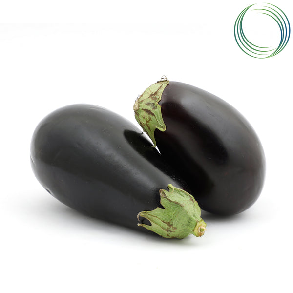 BRINJAL PURPLE BIG