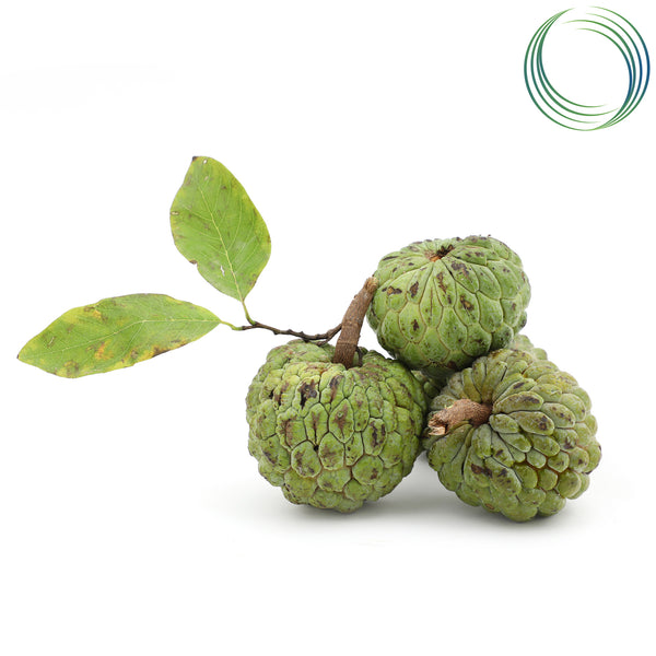 SS CUSTARD APPLE 500G