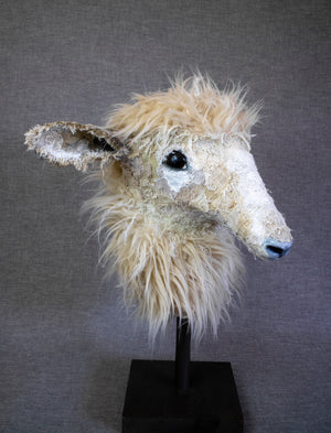 Francis Dorper-Cross  Sheep Sculpture