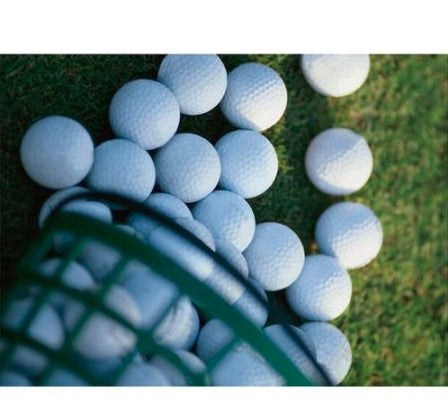 10PCS Practice Training Golf Balls Diameter 42MM
