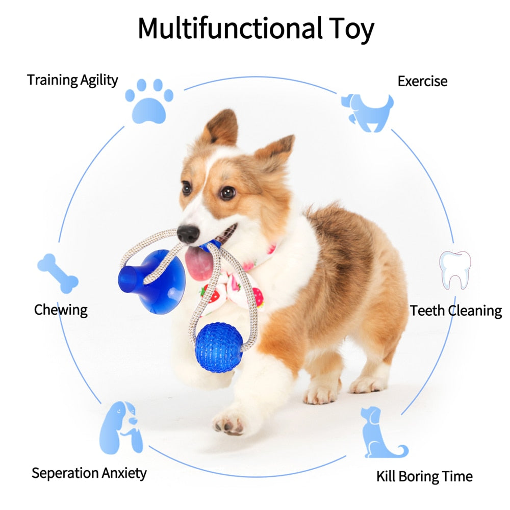 Indestructible Dog Chew Toys - Pet Molar Bite Toy
