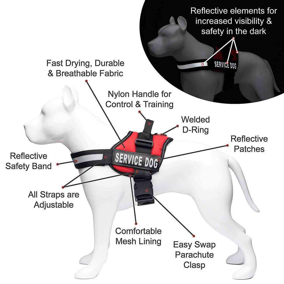 All-In-One No Pull Dog Harness With Reflective Collar Hook And Loop Straps - Harnesses