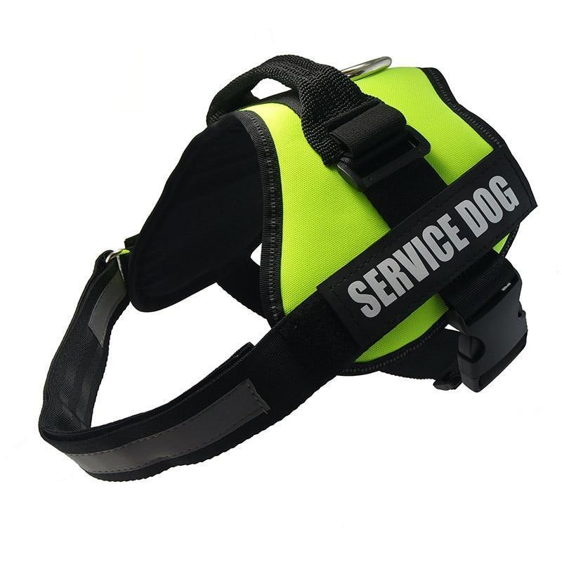 All-In-One No Pull Dog Harness With Reflective Collar Hook And Loop Straps - Green / S - Harnesses