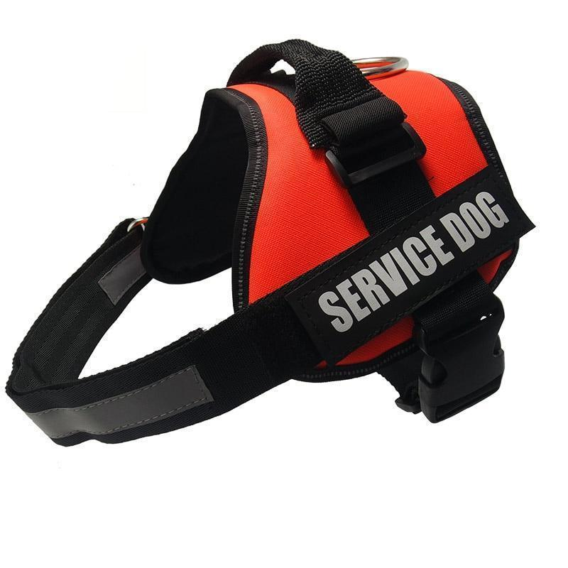 All-In-One No Pull Dog Harness With Reflective Collar Hook And Loop Straps - Orange / S - Harnesses