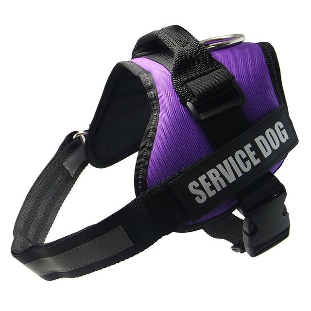 All-In-One No Pull Dog Harness With Reflective Collar Hook And Loop Straps - purple / S - Harnesses