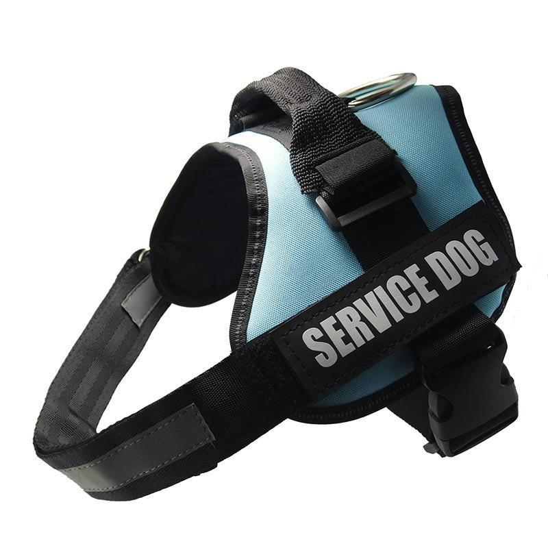 All-In-One No Pull Dog Harness With Reflective Collar Hook And Loop Straps - Sky Blue / S - Harnesses