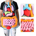 Anatomy Apron - Human Body Organs Awareness Educational Insights Toys for Children - Style 1