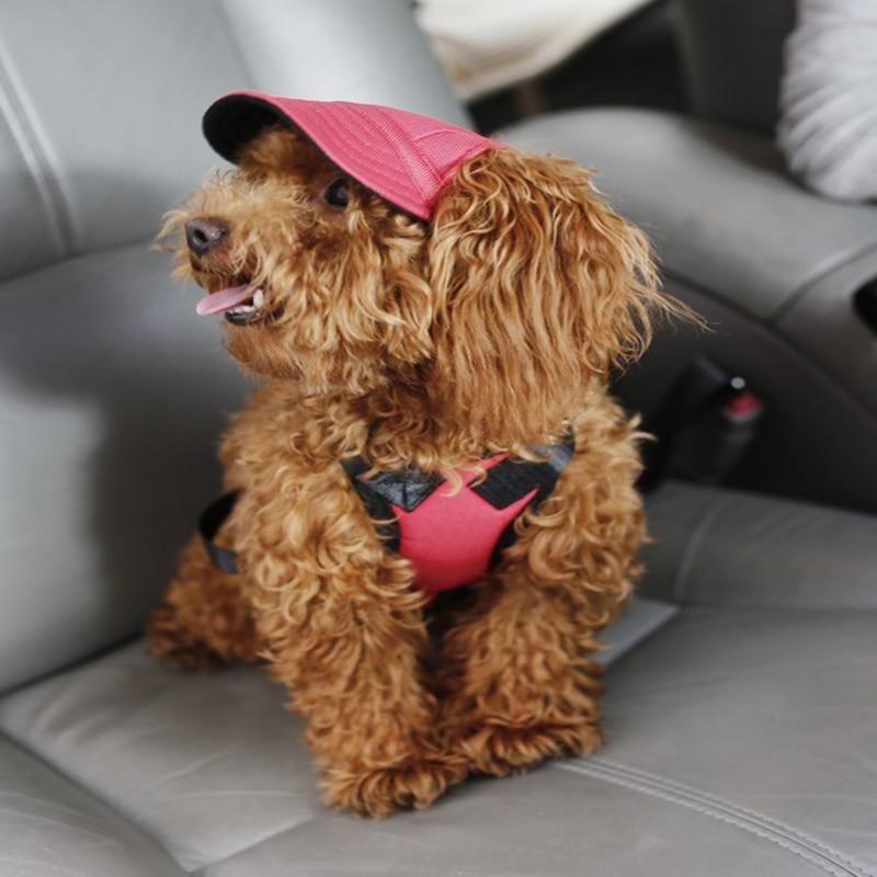 Dog Hat With Ear Holes - Puppy Baseball Cap - Dog Caps