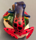 Wounaan Embera Poison Dart Frog Tagua Nut Carving-Panama 19102103mm