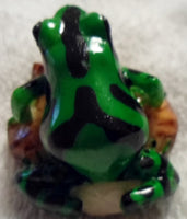 Wounaan Embera Tagua Nut Poison Dart Frog Carving-Panama 20010606mm