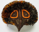 Wounaan Indian Woven Orange-Eyed Owl Bird Mask-Panama 20020404mm