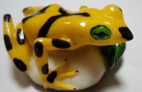 Wounaan Embera Golden Frog Tagua Nut Carving-Panama 20021023mm