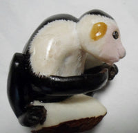 Wounaan Embera White Face Monkey Tagua Nut Carving-Panama 20021031mm