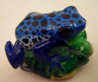 Wounaan Embera Poison Dart Frog Tagua Nut Carving-Panama 20102224mm