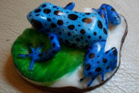 Wounaan Embera Poison Dart Frog Tagua Nut Carving-Panama 20050610mm