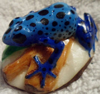 Wounaan Embera Tagua Nut Poison Dart Frog Carving-Panama 19092709mm