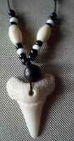 Shark Tooth Necklace Pendant-Panama 19092724mm