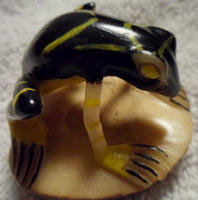 Wounaan Embera Poison Dart Frog Tagua Nut Carving-Panama 19100216mm