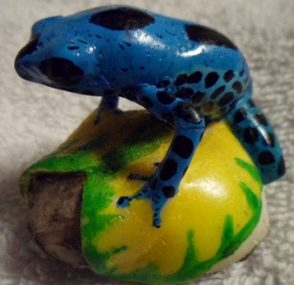 Wounaan Embera Poison Dart Frog Tagua Nut Carving-Panama 19100221mm