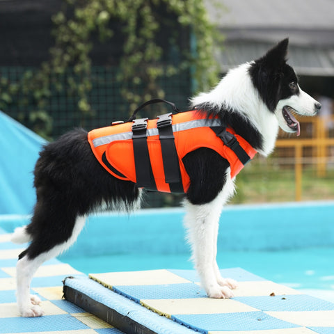 Pet Dog Life Jacket Safety Clothes Life Vest Swimming Clothes  Swimwear for small big dog Husky french bulldog dog accessories