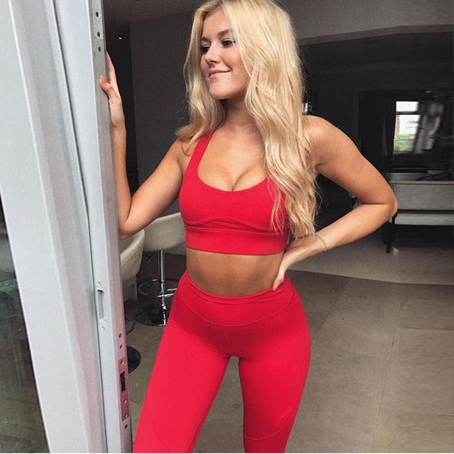 Solid Casual Seamless Set - Leggings, Sportswear, Sweatpants, Yoga Pants, Fitness, Sport bra, Yoga