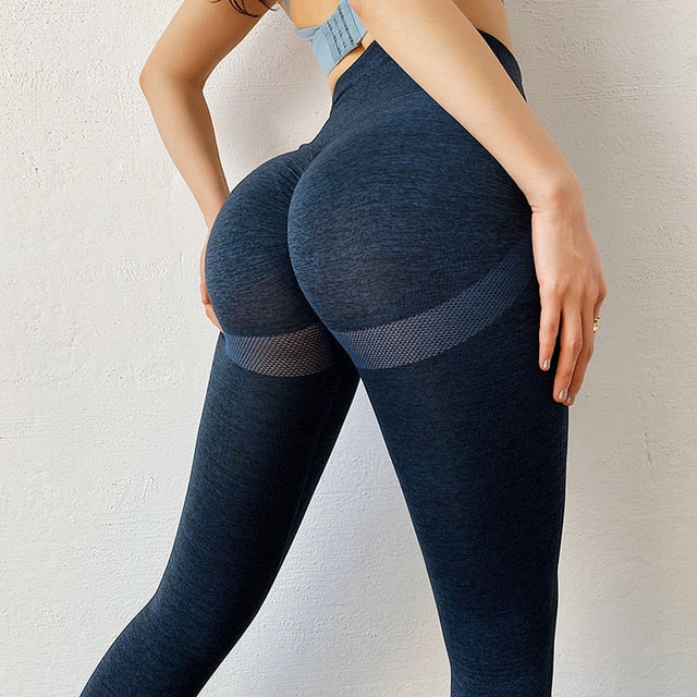 Elite Shape Seamless Leggings - Leggings, Sportswear, Sweatpants, Yoga Pants, Fitness, Sport bra, Yoga