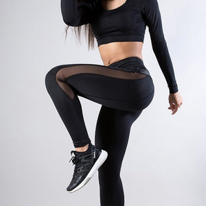 Champion Mesh Leggings - Fit Spirit