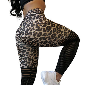 Leopard Workout Mesh Leggings - Leggings, Sportswear, Sweatpants, Yoga Pants, Fitness, Sport bra, Yoga