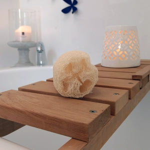 Compostable shower or bath sponge