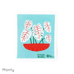 Compostable dish cloth with monstera pot plant design.