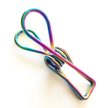 Stylish Rainbow Stainless Steel Clothes Peg.