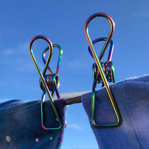 2 Rainbow stainless steel clothes pegs on clothes line.