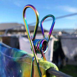 Close up of Rainbow Stainless Steel Clothes Peg